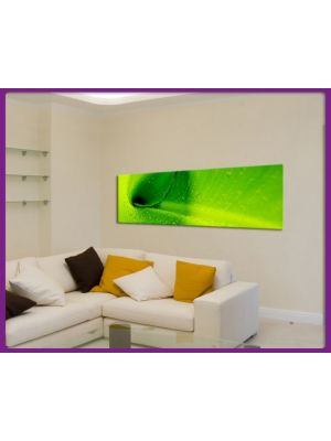 Canvas print Panorama Bananen bladeren