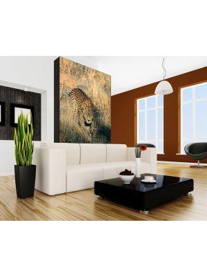 Foto behang Luipaard voorbeeld