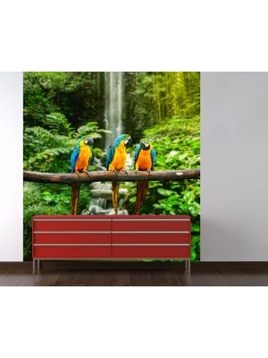 Foto behang Blauw-Gele Macaw Papagaai voorbeeld