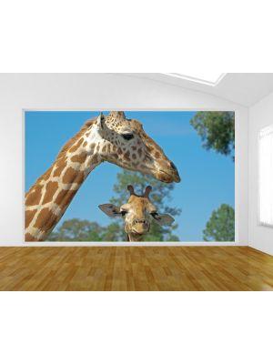 Foto behang Moeder en Baby Giraffe voorbeeld