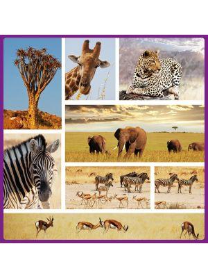 Foto print op canvas Safari Mix 1