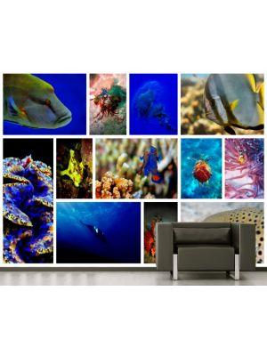 Foto behang Onderwater Collage voorbeeld