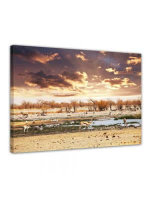 Gazellen - Foto print op canvas