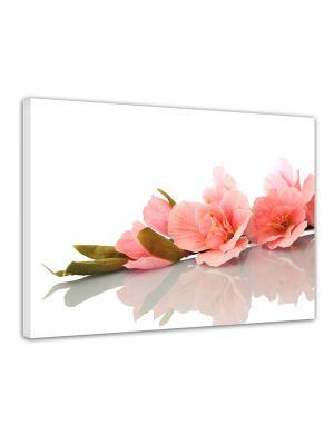 Orchidee - Foto print op canvas