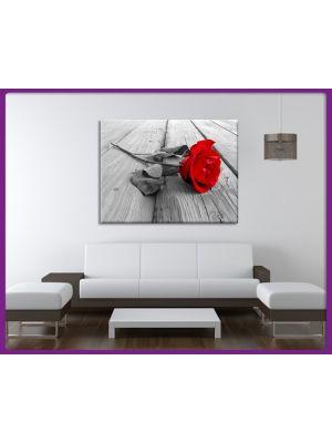 Canvas print Roos