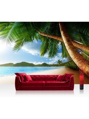 Fotobehang verlaten strand met palmbomen, zand, zon, zee, vliesbehang, vliesfotobehang, 300x210cm, 400x280cm, design, vakantie voorbeeld