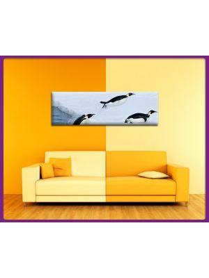 Foto print op canvas Panorama Pinguin