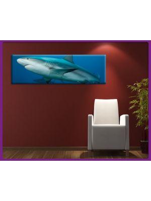 Foto print op canvas Panorama Haai - onderwaterwereld