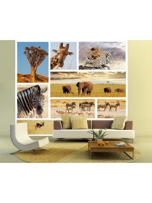 Fotobehang Afrika Collage I