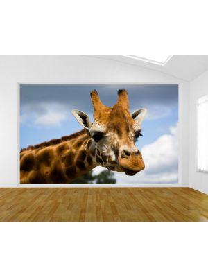 Fotobehang Giraffe