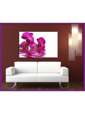 Canvas print Lila Orchideen