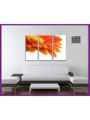 Foto print op canvas Gerbera bloem